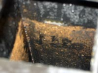 vinegar in the coffee maker tank