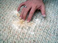 working peroxide mixture into carpet