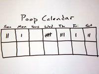 a written poop calendar