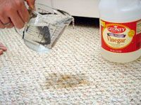 pouring vinegar on carpet stain