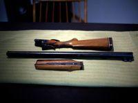 deconstructed shotgun