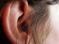 picture of ear and sideburn