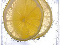 two slices of lemon in club soda
