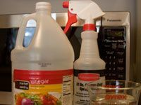 Vinegar and spray bottle