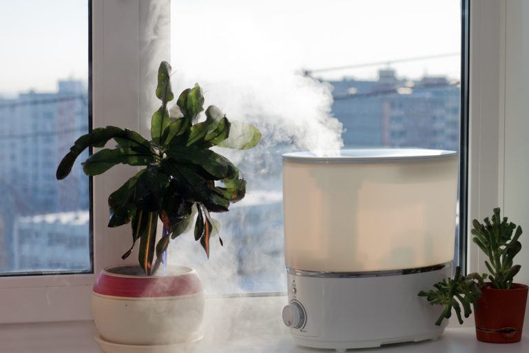 A humidifier in a window next to some plants.