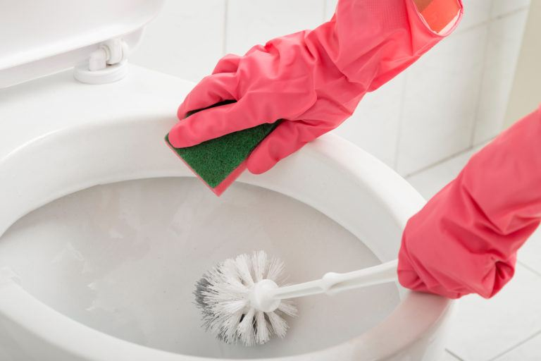 Gloved hands scrubbing a toilet.