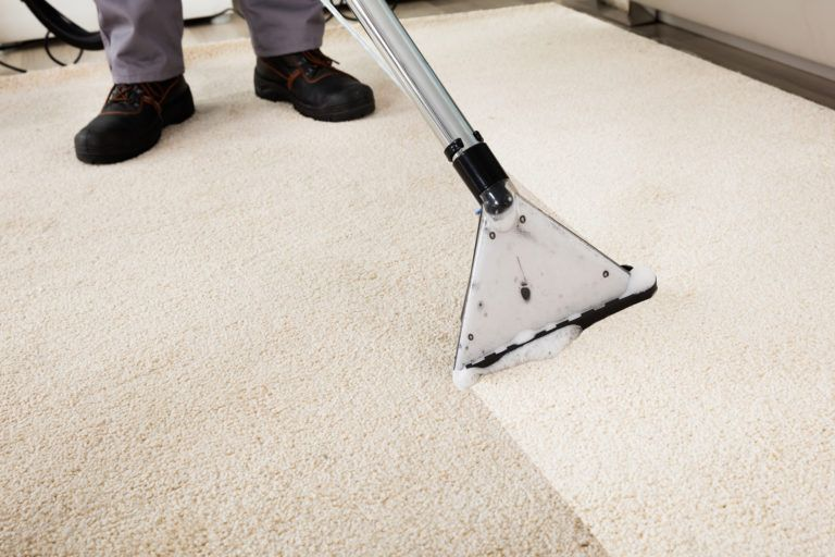 Image result for What are the potential benefits of Organic carpet cleaning services?