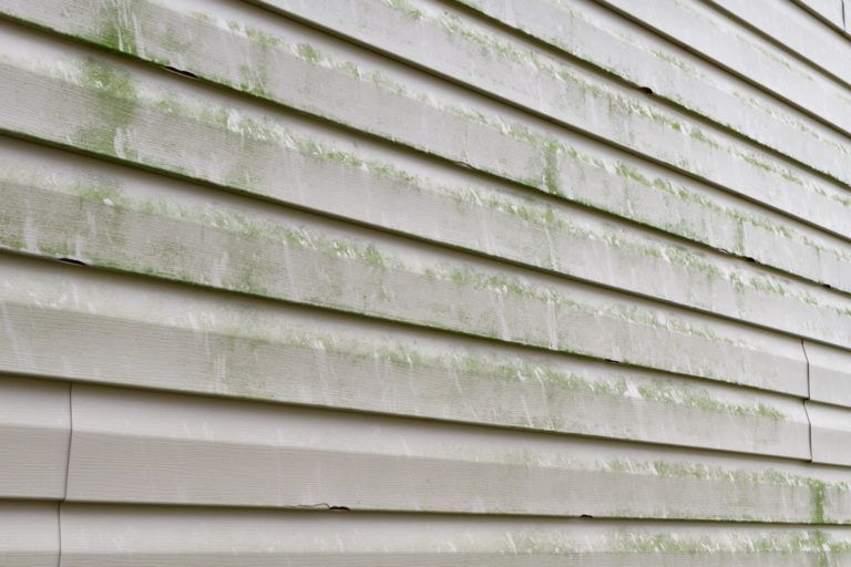 Dirty vinyl siding.